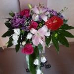 Centros-Flores-Mera (10)