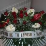Corona-Flores-Mera (10)