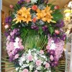 Corona-Flores-Mera (5)