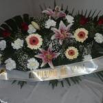 Corona-Flores-Mera (1)