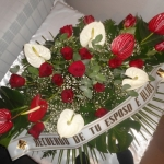 Corona-Flores-Mera (2)