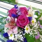 Rosas-Flores-Mera (11)